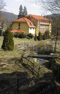 zloty-las-2004.jpg